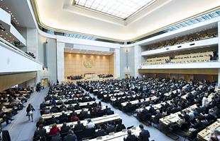 السفير د. محمد صابر إسماعيل، ممثل العراق الدائم لدى مكتب الأمم المتحدة في جنيف يشارك في إجتماعات القمة الدولية للجريمة العابرة للحدود